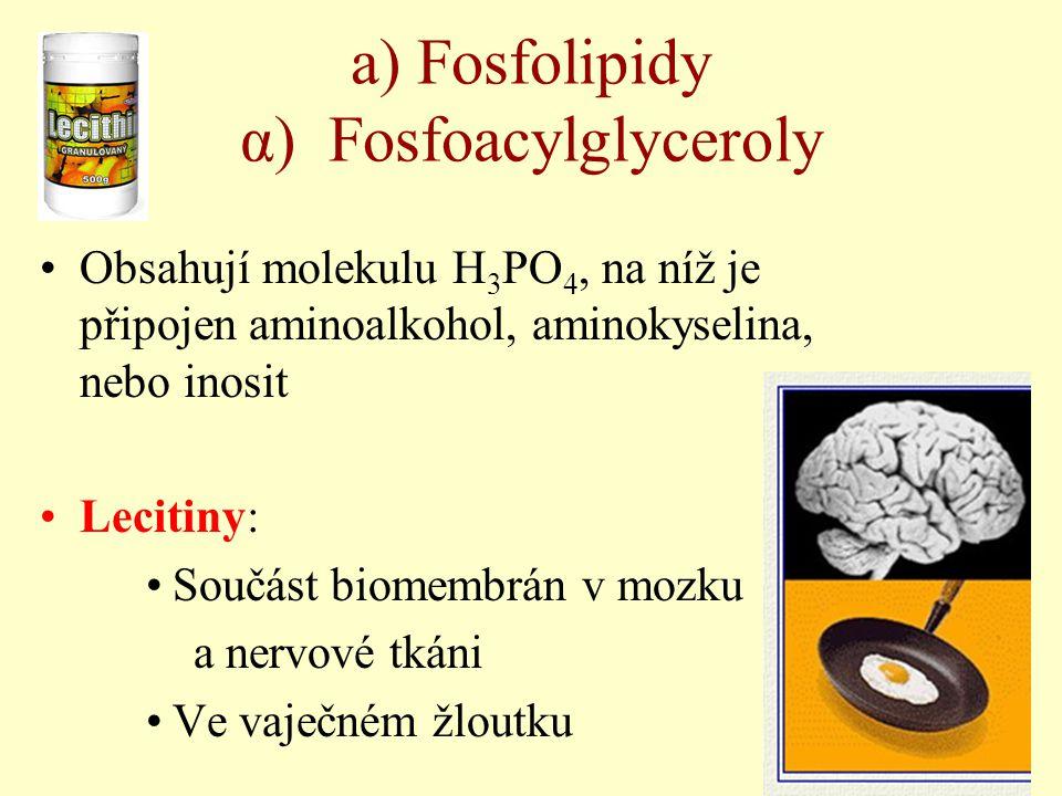 a) Fosfolipidy α) Fosfoacylglyceroly