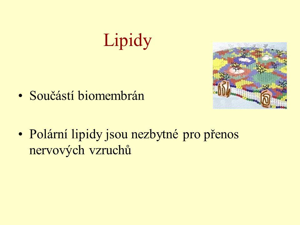 Lipidy Součástí biomembrán