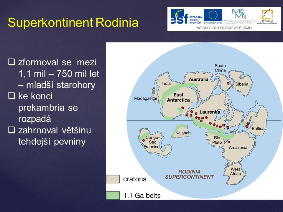 Superkontinent Rodinia