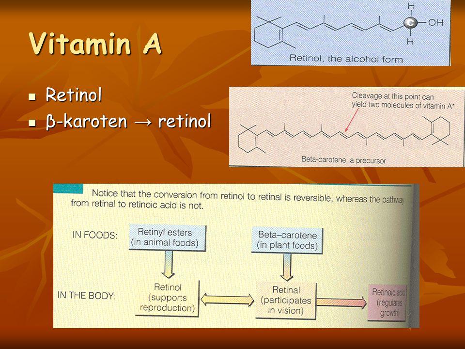Vitamin A Retinol β-karoten → retinol