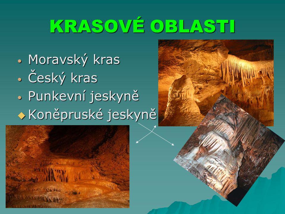 KRASOVÉ OBLASTI Moravský kras Český kras Punkevní jeskyně