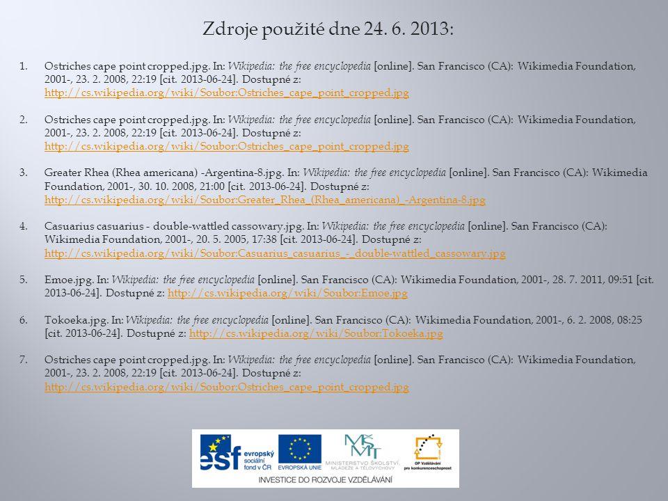 Zdroje použité dne 24. 6. 2013: