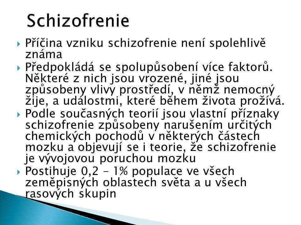 Schizofrenie Příčina vzniku schizofrenie není spolehlivě známa