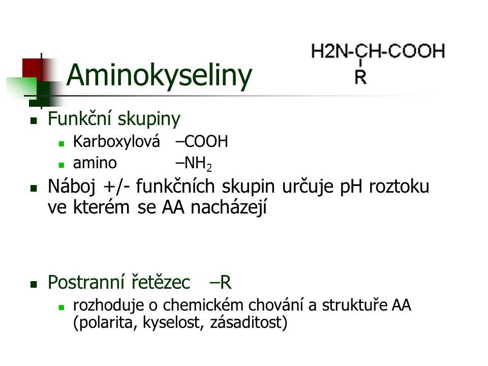 Aminokyseliny Funkční skupiny