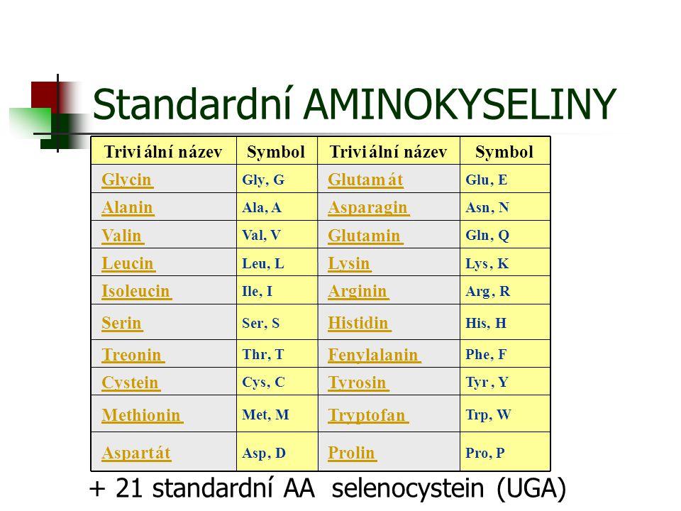 Standardní AMINOKYSELINY