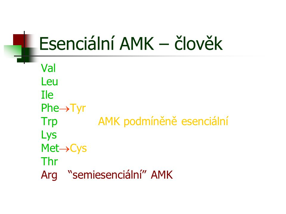 Esenciální AMK – člověk