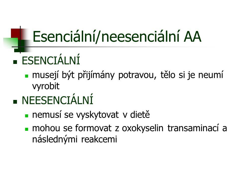 Esenciální/neesenciální AA