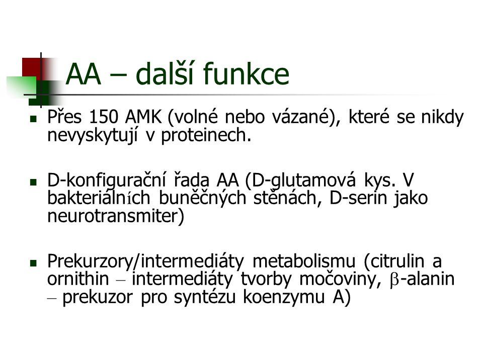AA – další funkce Přes 150 AMK (volné nebo vázané), které se nikdy nevyskytují v proteinech.