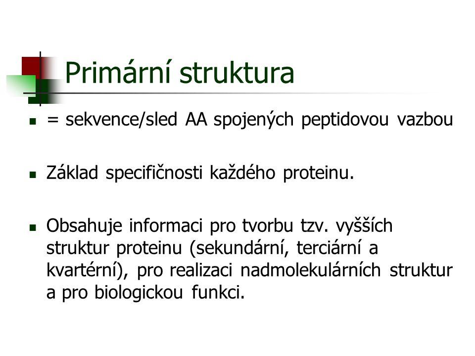 Primární struktura = sekvence/sled AA spojených peptidovou vazbou