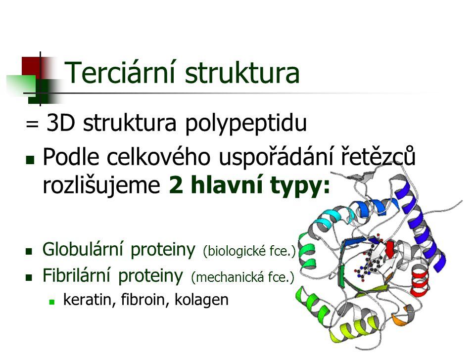 Terciární struktura = 3D struktura polypeptidu. Podle celkového uspořádání řetězců rozlišujeme 2 hlavní typy: