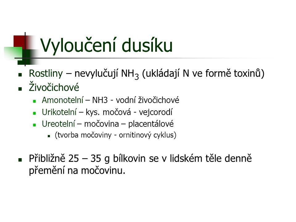 Vyloučení dusíku Rostliny – nevylučují NH3 (ukládají N ve formě toxinů) Živočichové. Amonotelní – NH3 - vodní živočichové.