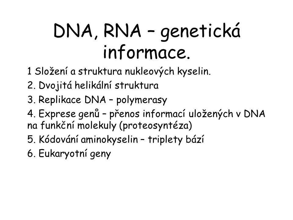 DNA, RNA – genetická informace.