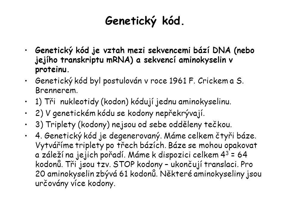 Genetický kód. Genetický kód je vztah mezi sekvencemi bází DNA (nebo jejího transkriptu mRNA) a sekvencí aminokyselin v proteinu.