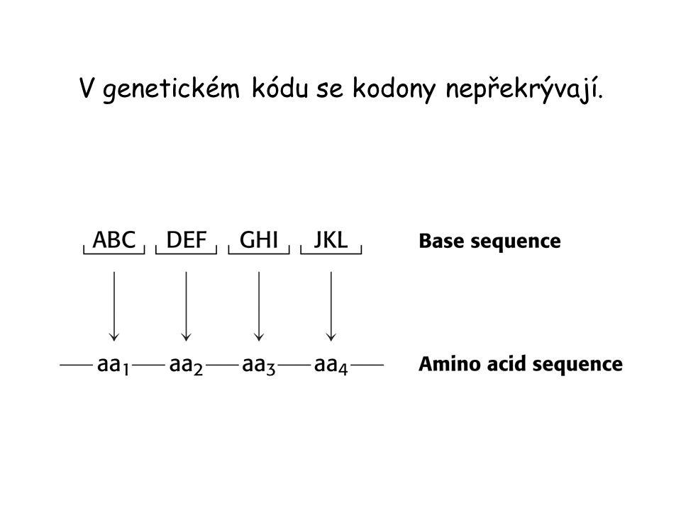 V genetickém kódu se kodony nepřekrývají.
