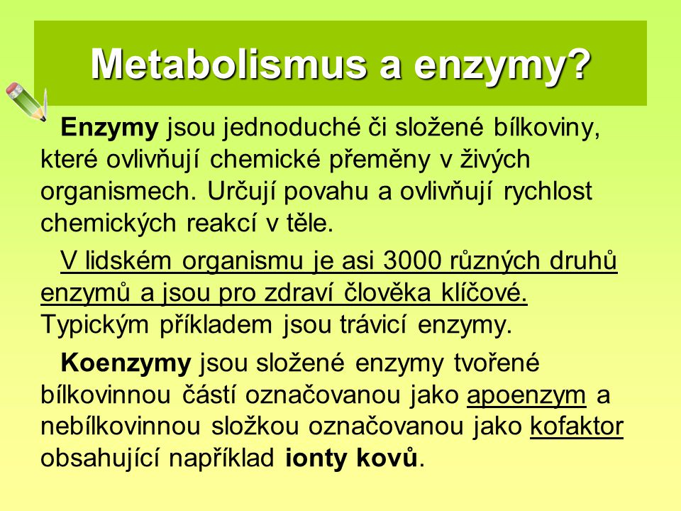 Metabolismus a enzymy