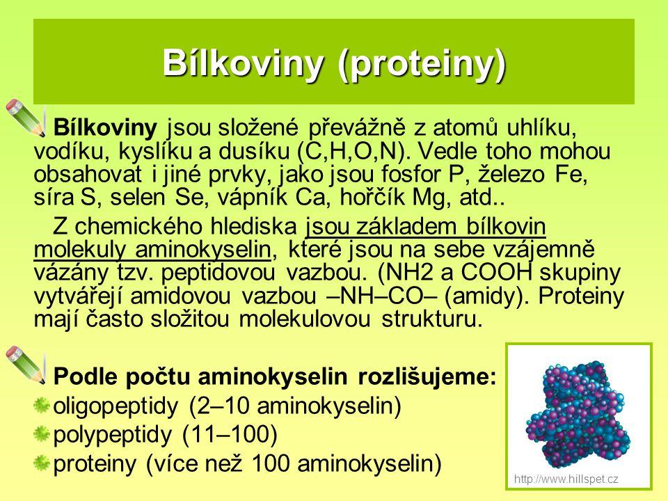 Bílkoviny (proteiny)
