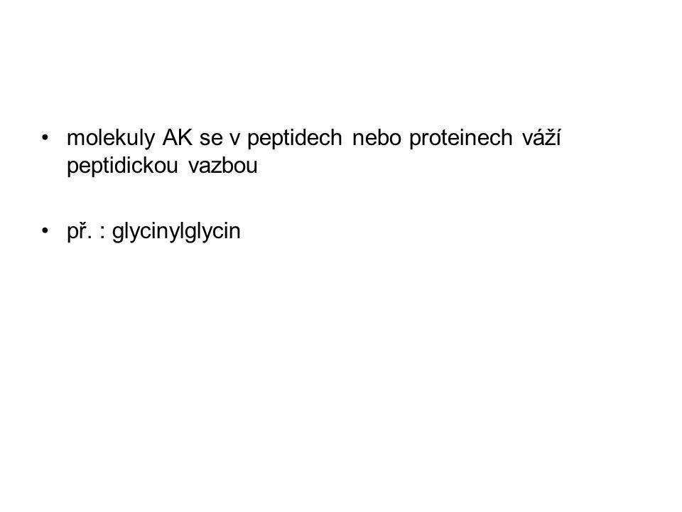 molekuly AK se v peptidech nebo proteinech váží peptidickou vazbou