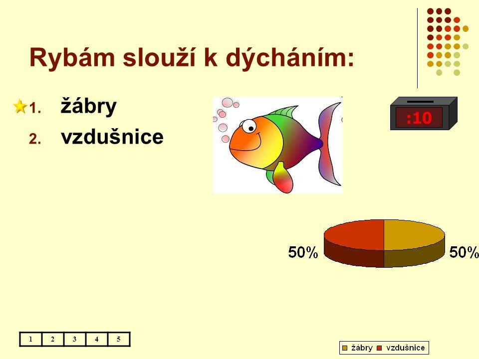 Rybám slouží k dýcháním: