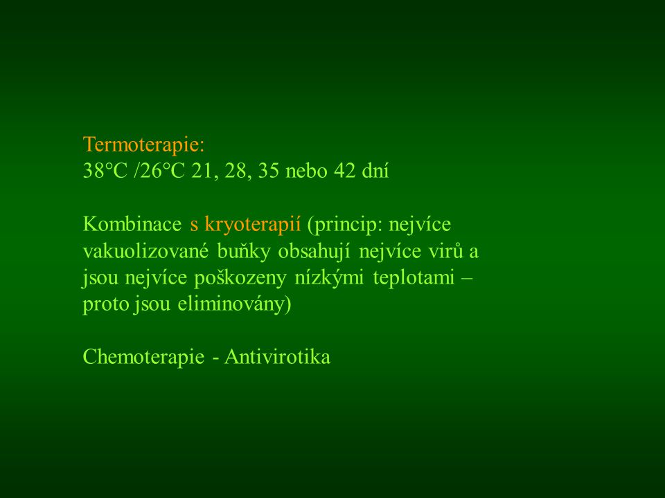 Termoterapie: 38°C /26°C 21, 28, 35 nebo 42 dní.