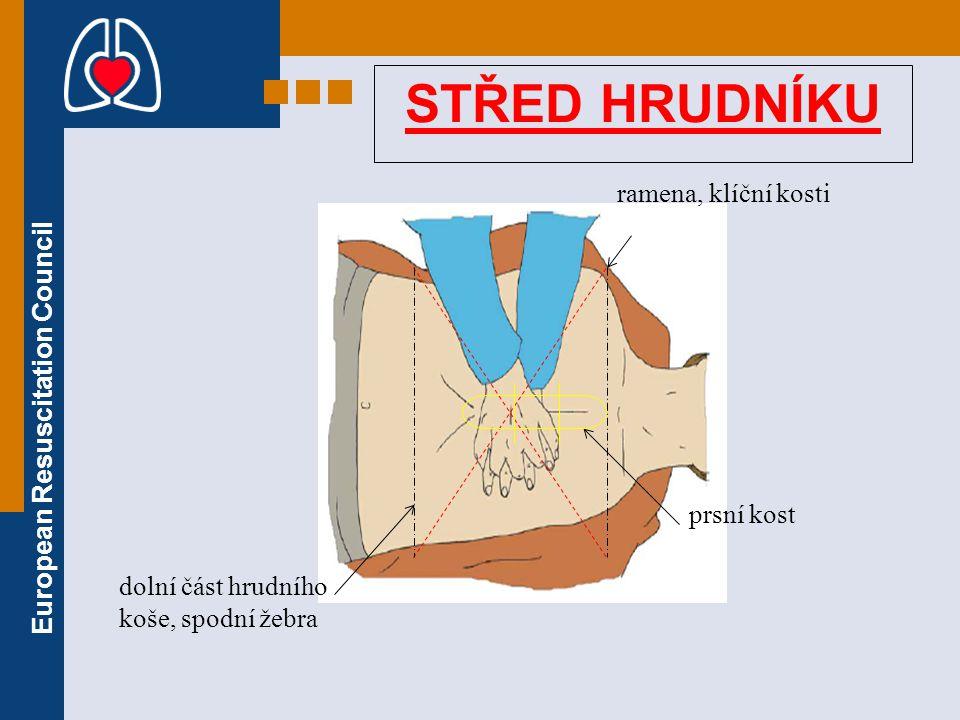 STŘED HRUDNÍKU ramena, klíční kosti prsní kost