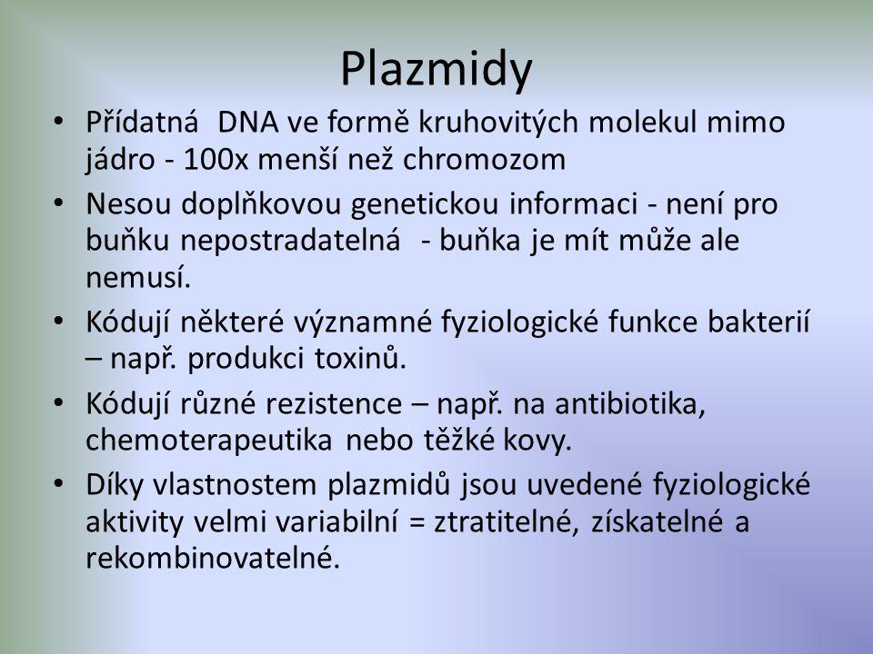 Plazmidy Přídatná DNA ve formě kruhovitých molekul mimo jádro - 100x menší než chromozom.