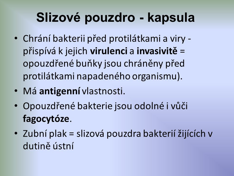Slizové pouzdro - kapsula