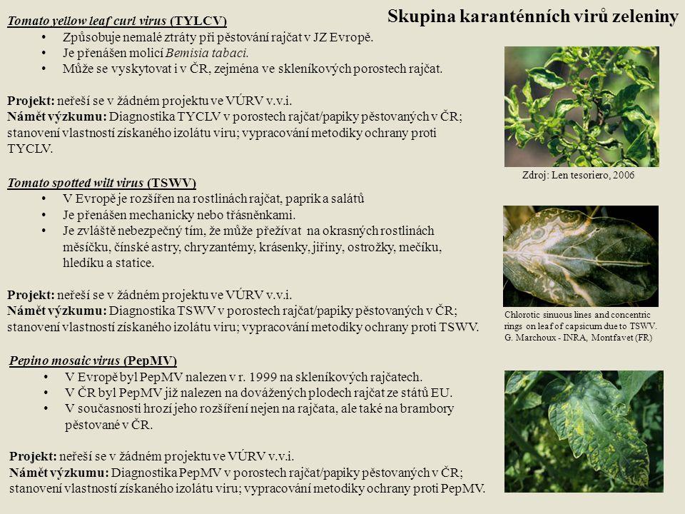 Skupina karanténních virů zeleniny