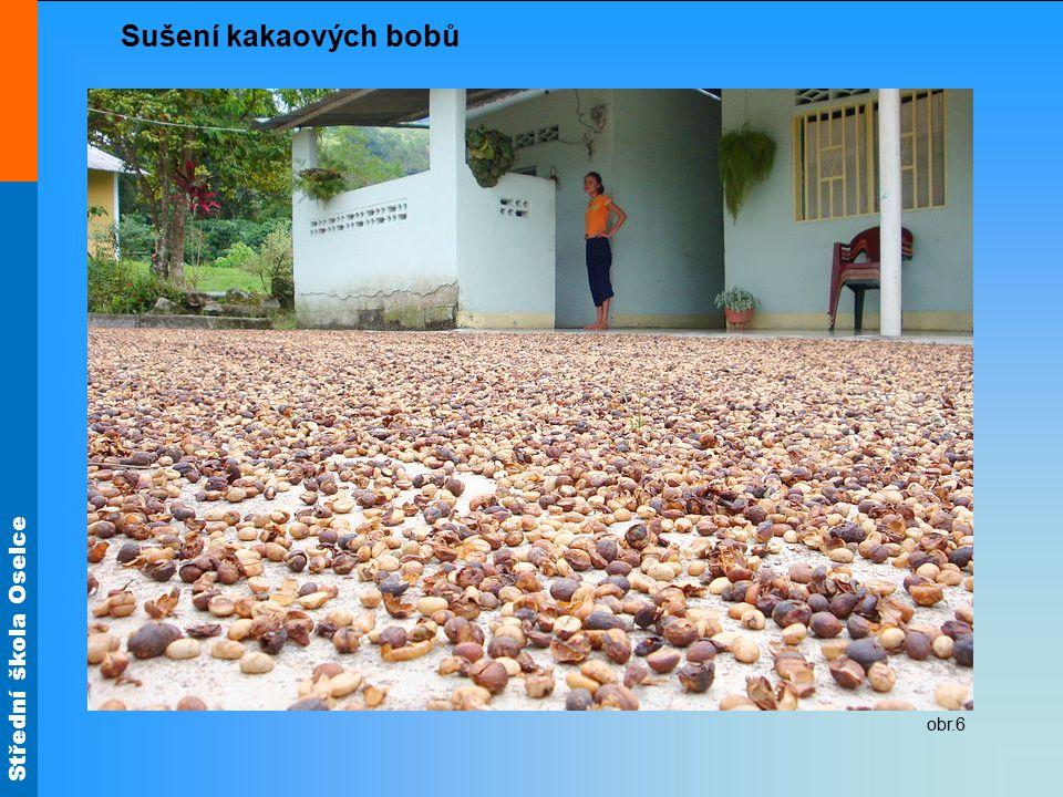 Sušení kakaových bobů obr.6