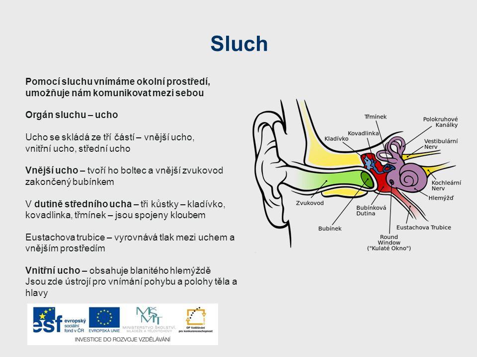 Sluch Pomocí sluchu vnímáme okolní prostředí, umožňuje nám komunikovat mezi sebou. Orgán sluchu – ucho.