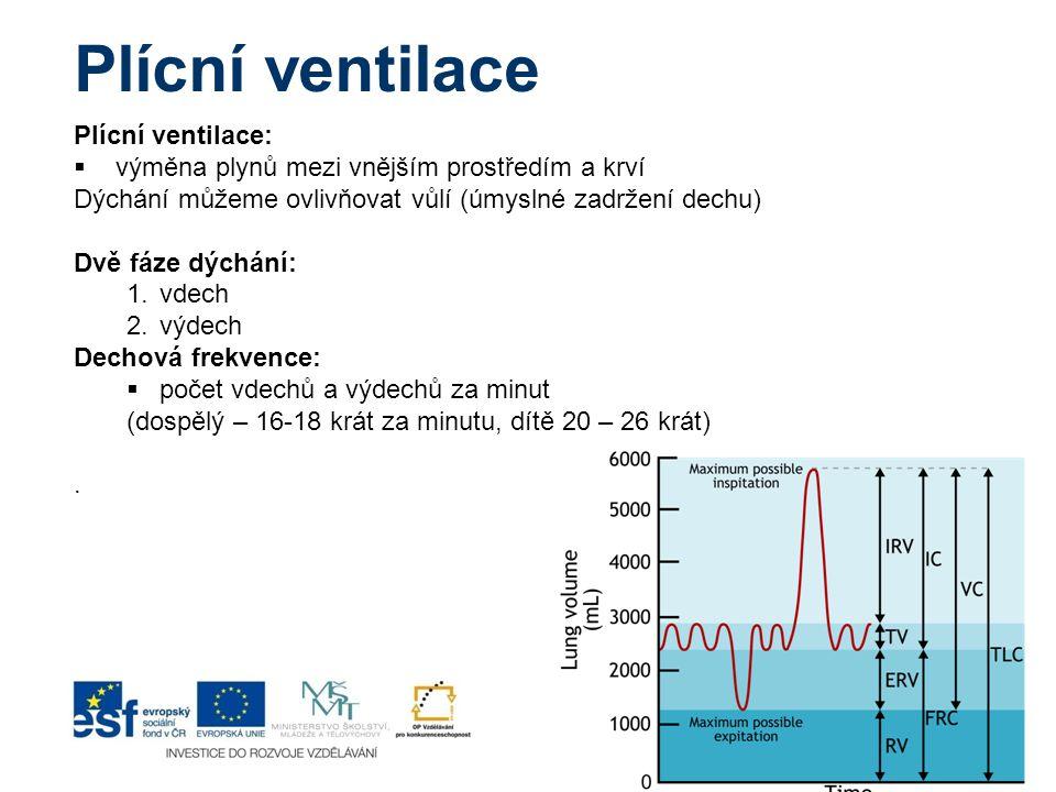 Plícní ventilace Plícní ventilace: