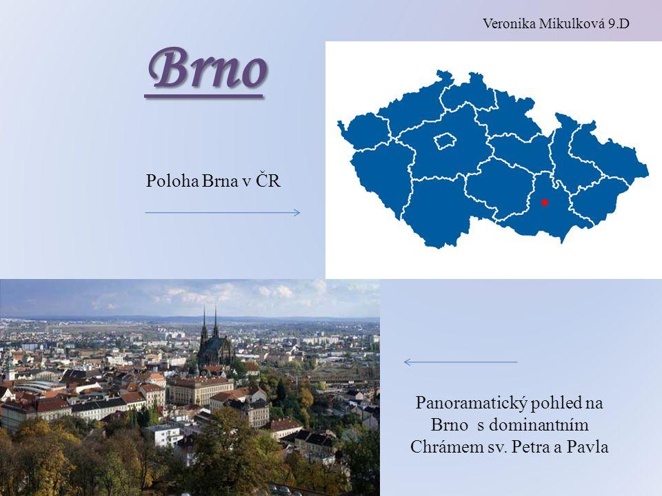 Panoramatický pohled na Brno s dominantním Chrámem sv. Petra a Pavla