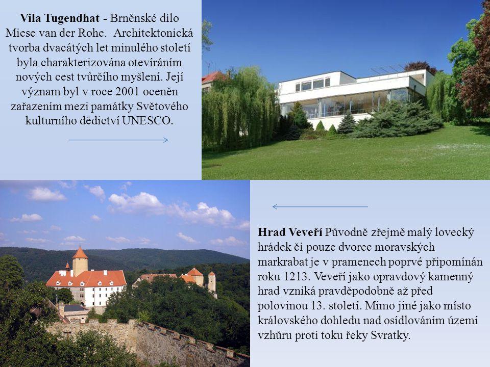 Vila Tugendhat - Brněnské dílo Miese van der Rohe