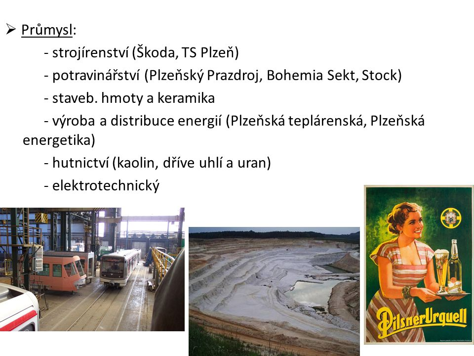  Průmysl: - strojírenství (Škoda, TS Plzeň) - potravinářství (Plzeňský Prazdroj, Bohemia Sekt, Stock) - staveb.