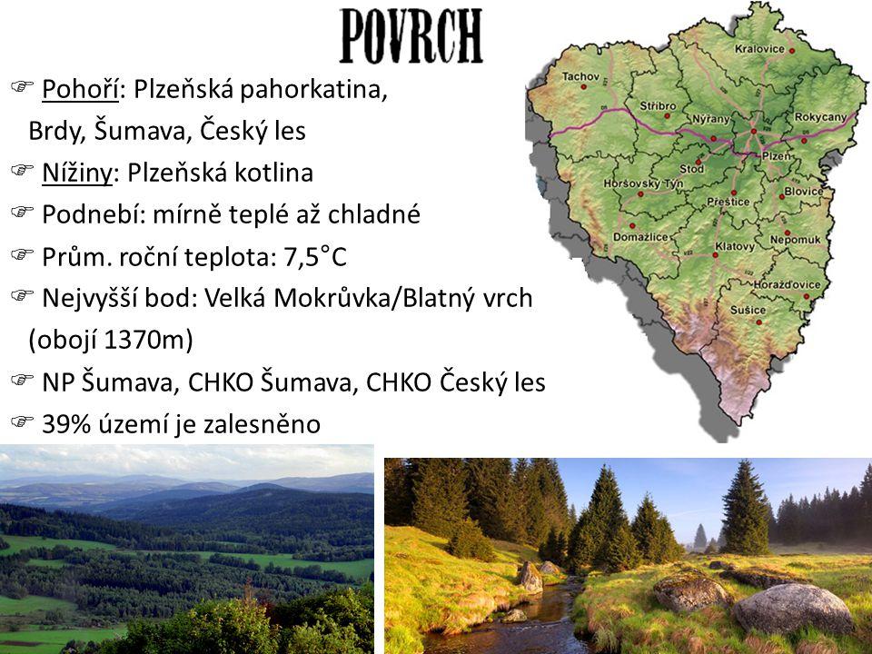 Pohoří: Plzeňská pahorkatina,