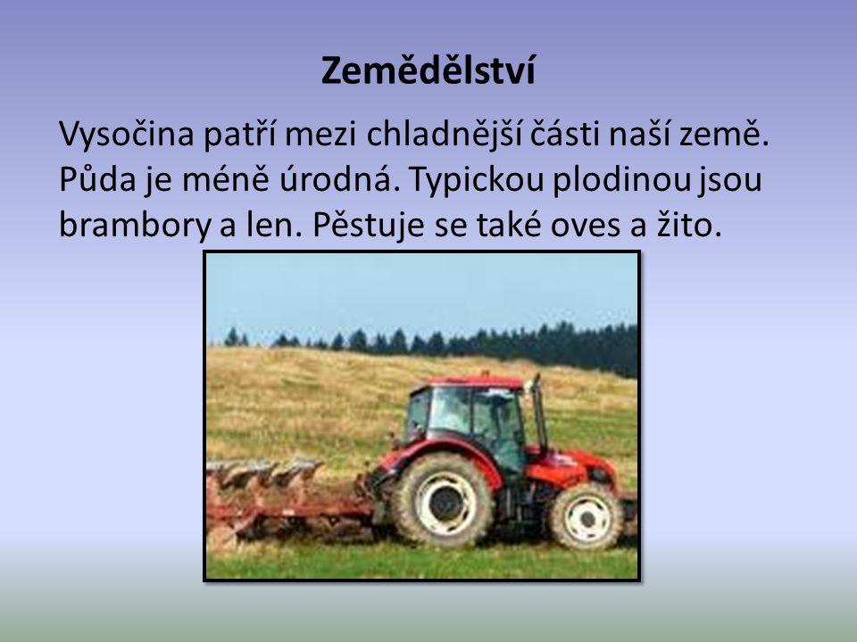 Zemědělství Vysočina patří mezi chladnější části naší země.