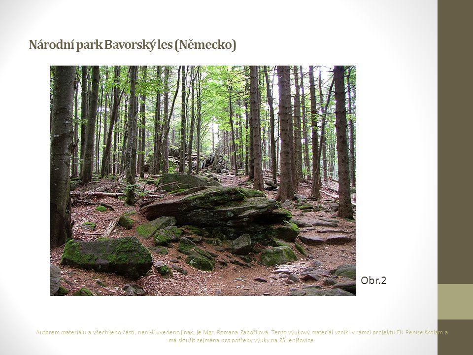 Národní park Bavorský les (Německo)