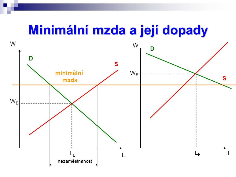 Minimální mzda a její dopady
