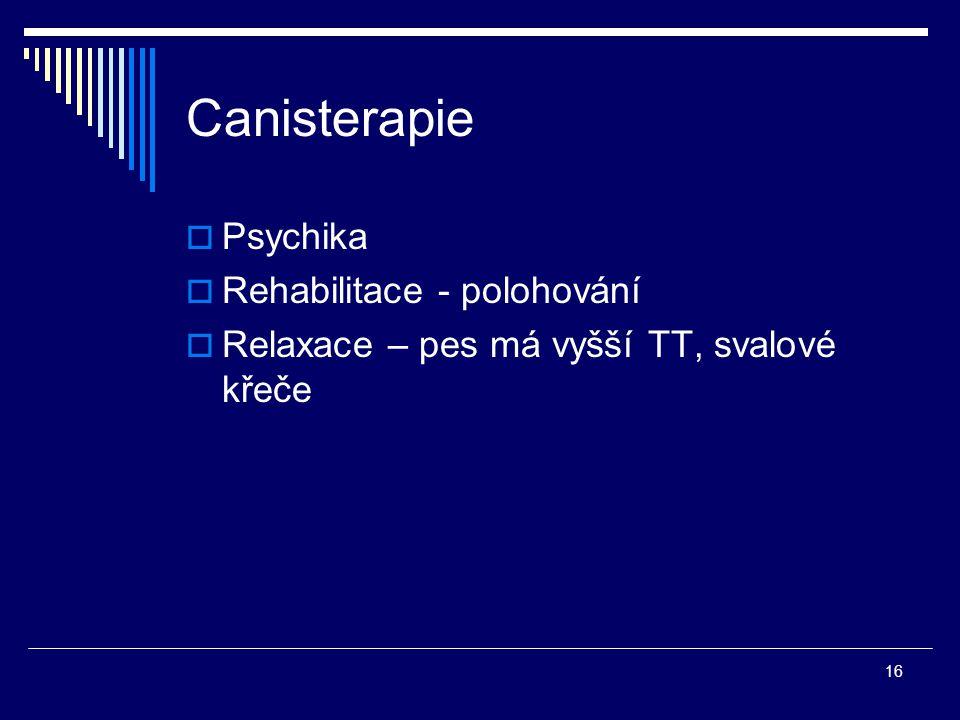 Canisterapie Psychika Rehabilitace - polohování
