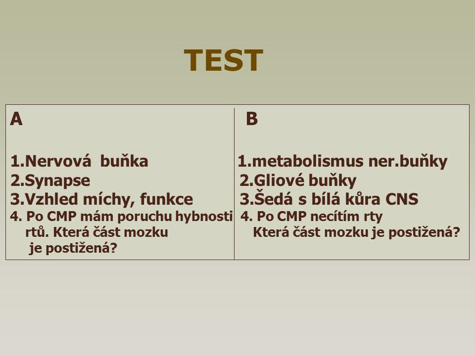 TEST A B 1.Nervová buňka 1.metabolismus ner.buňky