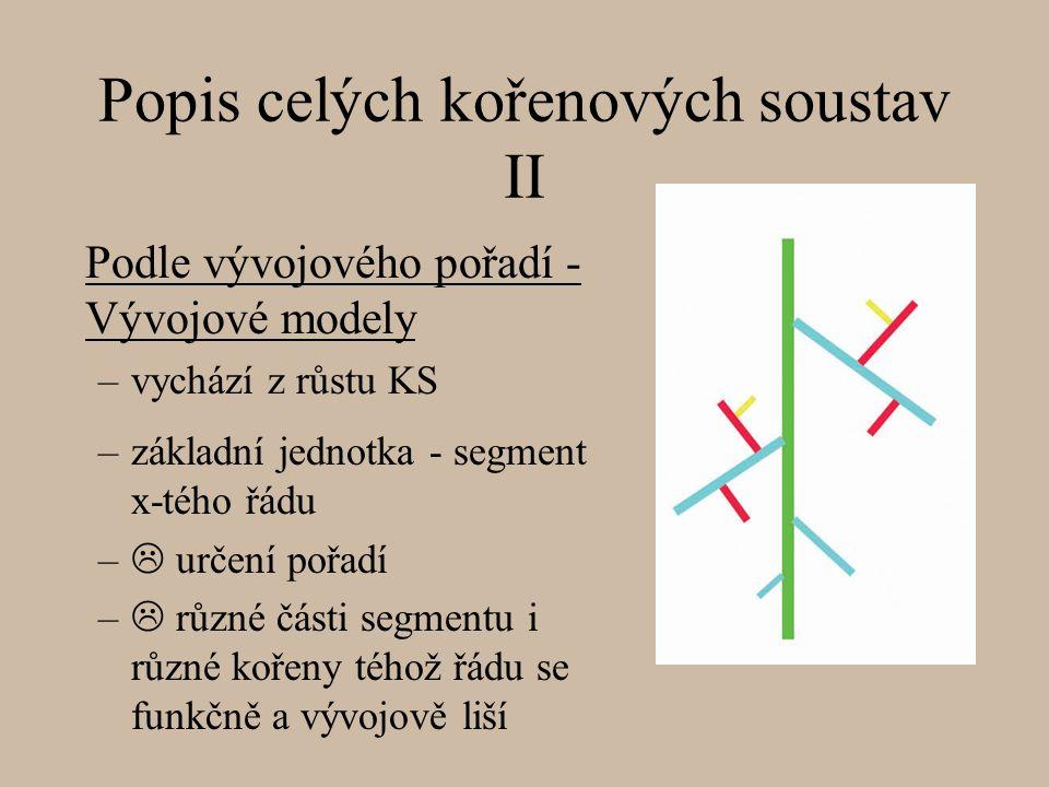 Popis celých kořenových soustav II