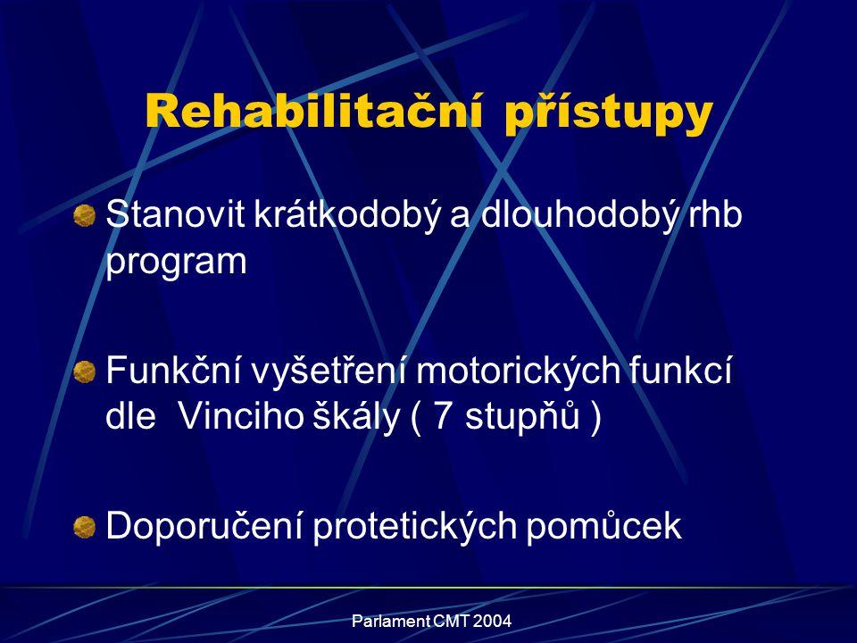 Rehabilitační přístupy