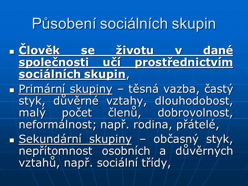 Působení sociálních skupin