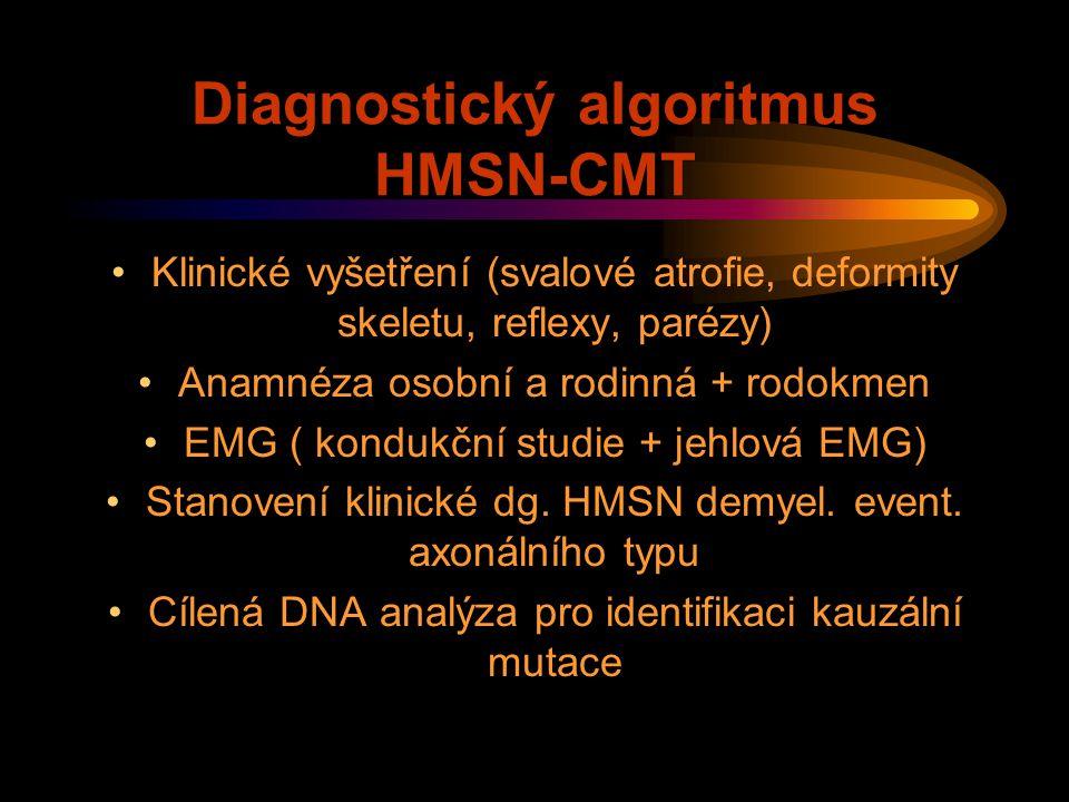 Diagnostický algoritmus HMSN-CMT