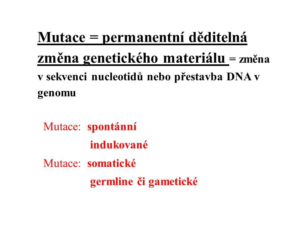 Mutace = permanentní děditelná změna genetického materiálu = změna v sekvenci nucleotidů nebo přestavba DNA v genomu