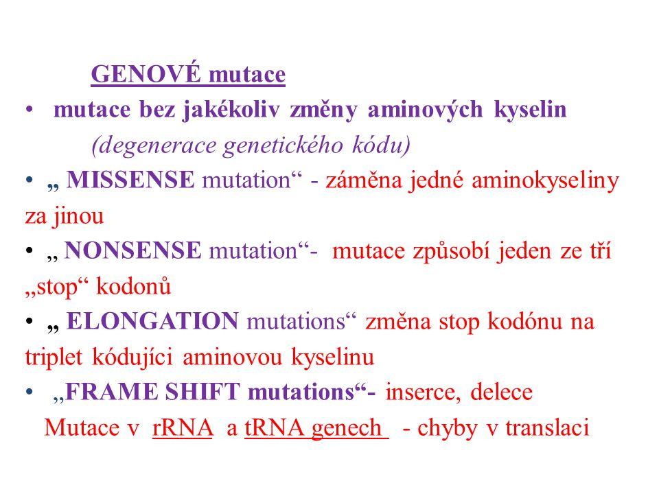 """GENOVÉ mutace mutace bez jakékoliv změny aminových kyselin (degenerace genetického kódu) """" MISSENSE mutation - záměna jedné aminokyseliny za jinou."""