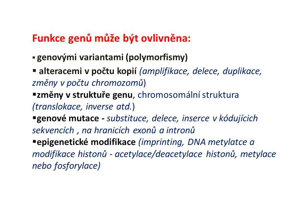 Funkce genů může být ovlivněna: