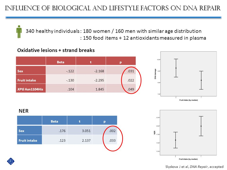 Influence of biological and lifestyle factors on DNA repair