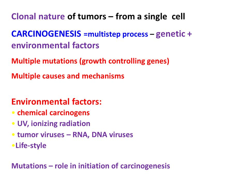 Clonal nature of tumors – from a single cell