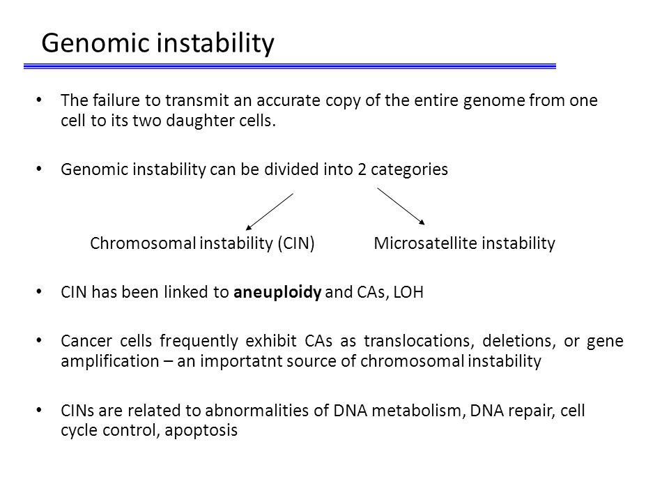 Genomic instability The failure to transmit an accurate copy of the entire genome from one cell to its two daughter cells.