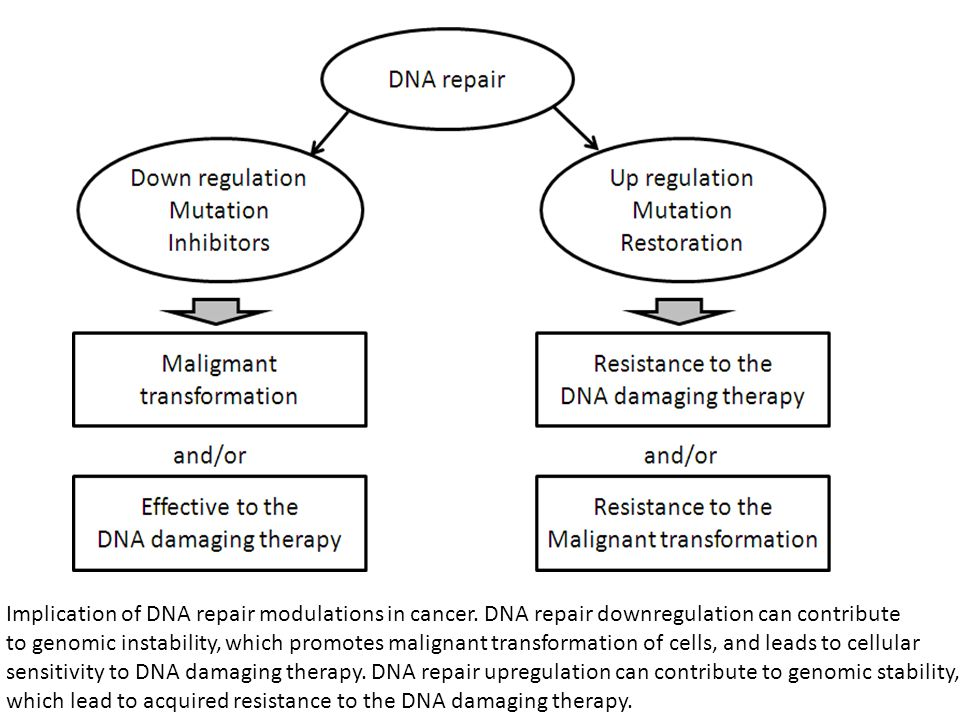 Implication of DNA repair modulations in cancer